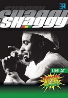 Shaggy: Live At Chiemsee Reggae Summer